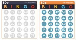 75 Ball Bingo Cards - Bid Bingo