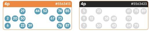 Buying 90 Ball Bingo Tickets - Bid Bingo UK